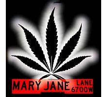 Mary Jane Lane - Black Leaf Photographic Print