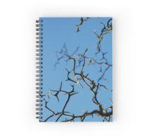 Flying dragon Spiral Notebook