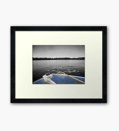 Tinnie Bow  Framed Print