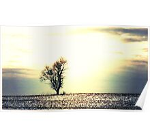 The Lonely Tree - iridescent glow Poster