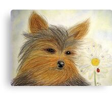 Yorkie Summer Fun Canvas Print