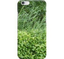 Beautiful Lush Greenery iPhone Case/Skin