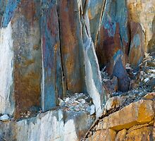 Rock Face by Werner Padarin