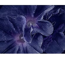 Bell bottom blues Photographic Print