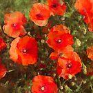 Poppies in a Meadow by jean-louis bouzou
