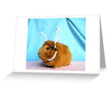 Easter Piggy Greeting Card
