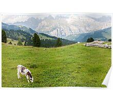 mountain landscape Poster