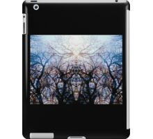 Stained Glass Woodlands iPad Case/Skin