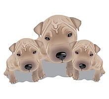 Cute puppies Photographic Print