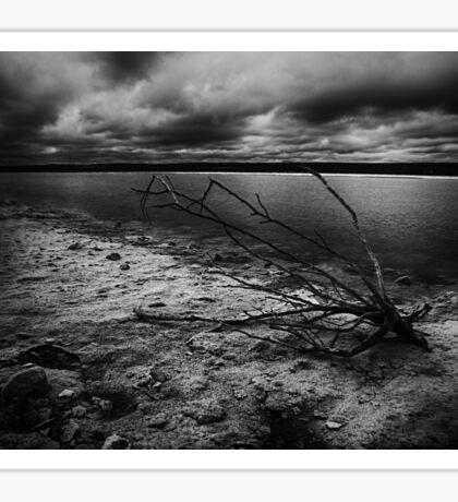 Dead Wood Salt Lake Sticker