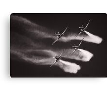 The Roulettes Canvas Print