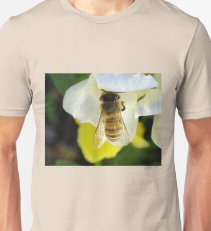 Busy Bee Toowoomba Queensland Australia  T-Shirt