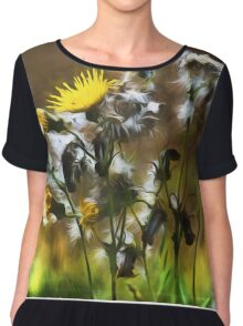 Dandelion Life Cycle with artistic filter Chiffon Top
