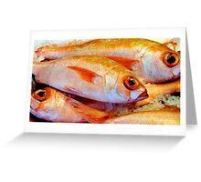 Fish - Aukland, New Zealand Greeting Card