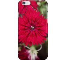 Floral 12 iPhone Case/Skin