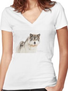 Timber Wolf in Snow Women's Fitted V-Neck T-Shirt