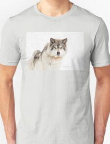 Timber Wolf in Snow T-Shirt