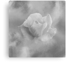 Rose with Texture Canvas Print