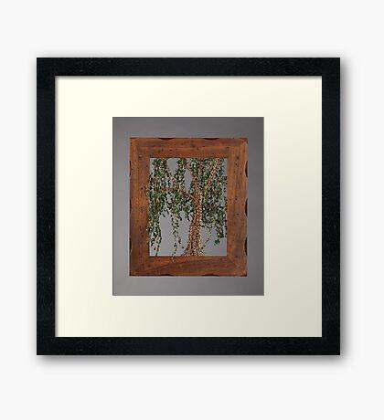 Summer Willow Tree - Dark Framed Print