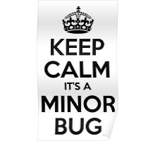 Keep Calm it's a Minor Bug Poster
