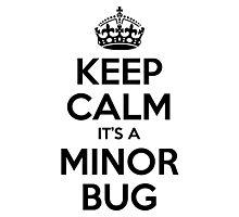 Keep Calm it's a Minor Bug Photographic Print