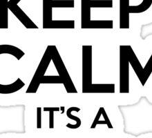 Keep Calm it's a Minor Bug Sticker