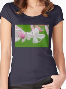 Lilac Blossom Macro Women's Fitted Scoop T-Shirt