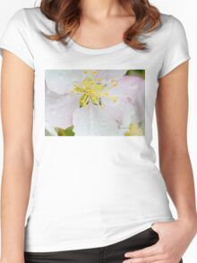Apple Blossom Macro Women's Fitted Scoop T-Shirt