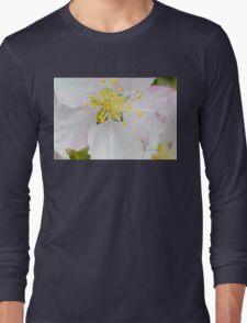 Apple Blossom Macro Long Sleeve T-Shirt
