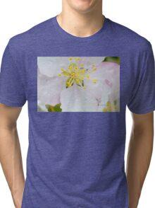 Apple Blossom Macro Tri-blend T-Shirt