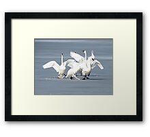Ice Dancing Framed Print