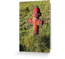 Hydrant in a Field Greeting Card