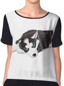 Cute dog sitting Chiffon Top