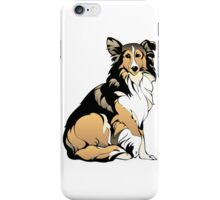 Sitting collie  iPhone Case/Skin
