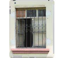 Window With Steel Shutters iPad Case/Skin