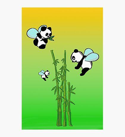 Flying pandas Photographic Print