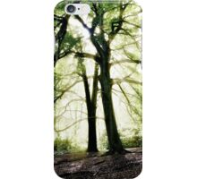 God's Rays, Sunlight streaming through trees iPhone Case/Skin