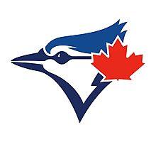 Toronto Blue Jays Photographic Print