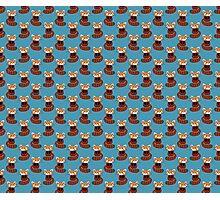 Cute Red Panda Blue Pattern Photographic Print