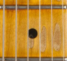 Maple guitar fretboard Sticker