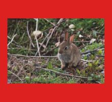 Baby rabbit just out of the nest. One Piece - Short Sleeve
