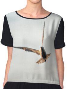 Bird in Flight Chiffon Top