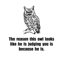 Owl Judge You Photographic Print