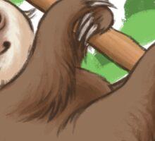 Baby Sloth Sticker