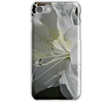 The Shy Ones iPhone Case/Skin