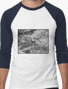 Deer Pose black and White Men's Baseball ¾ T-Shirt