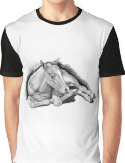 Long-legged Colt Lying Down, Pencil Drawing, Horse Graphic T-Shirt