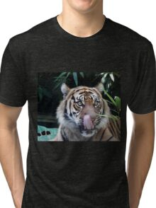 Boy you look good Tri-blend T-Shirt