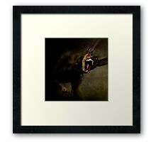 Dogs with game face on 666. Framed Print