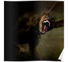 Dogs with game face on 666. Poster